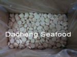 Sea Scallop Meat, Dry
